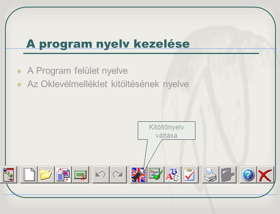 A program nyelv kezelése