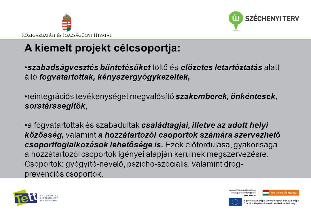 A kiemelt projekt célcsoportja: