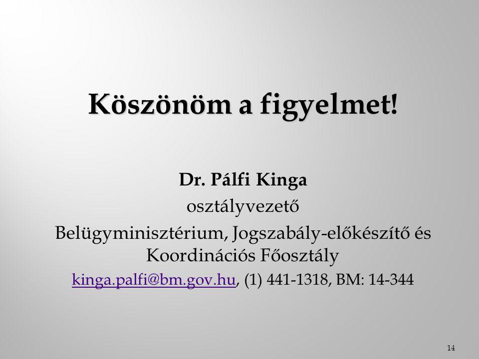 Köszönöm a figyelmet! Dr. Pálfi Kinga osztályvezető
