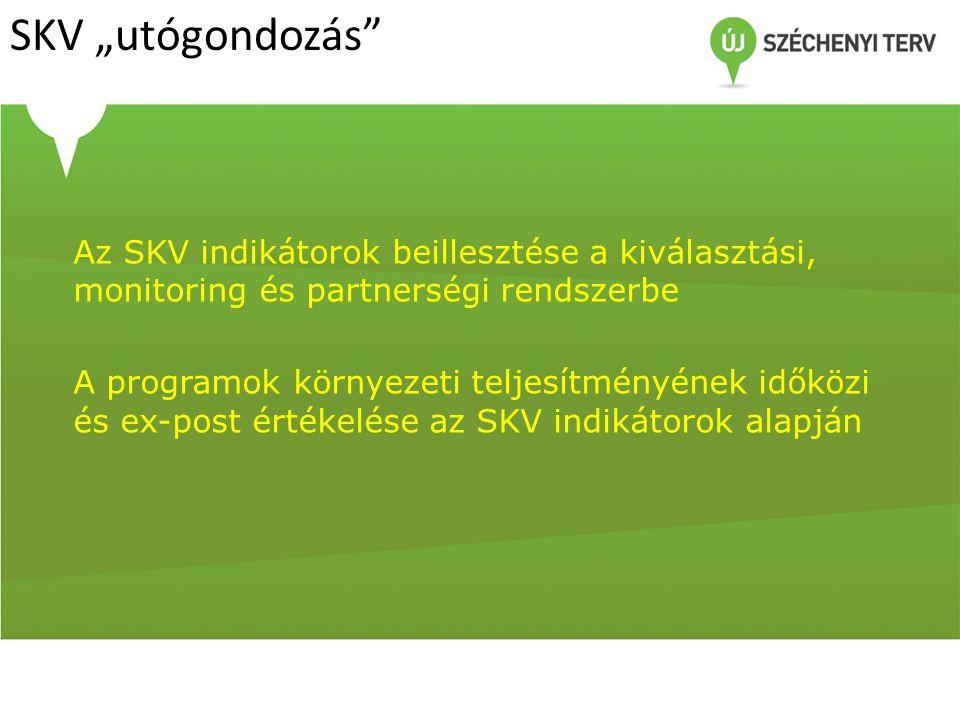 """SKV """"utógondozás"""