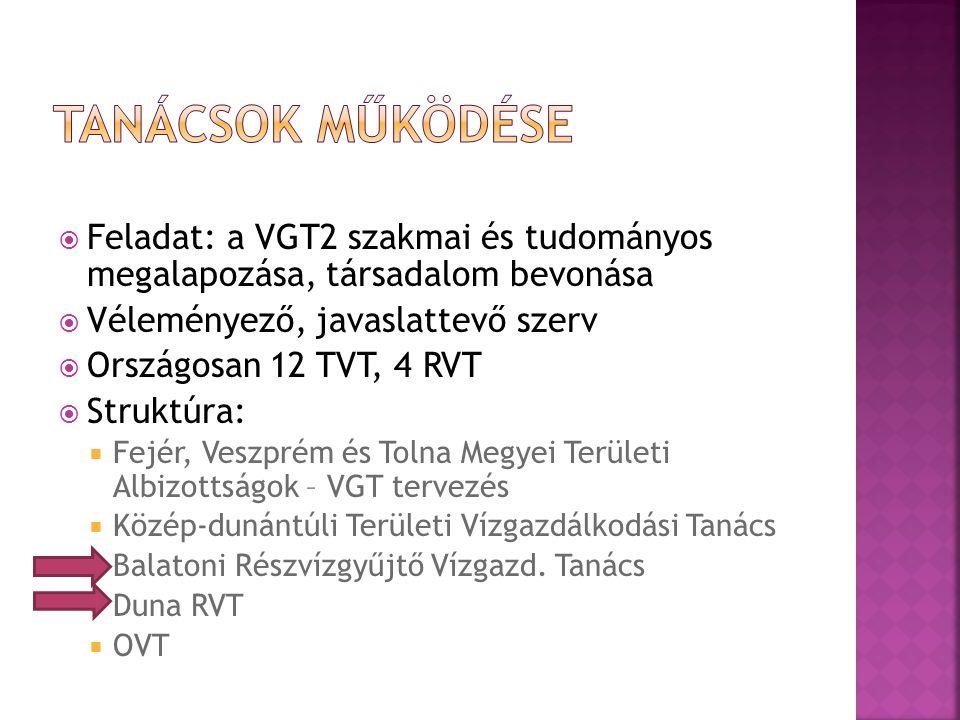 Tanácsok működése Feladat: a VGT2 szakmai és tudományos megalapozása, társadalom bevonása. Véleményező, javaslattevő szerv.