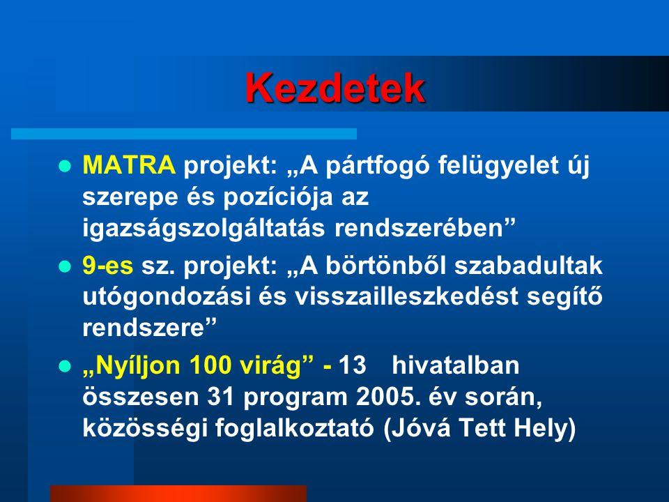 """Kezdetek MATRA projekt: """"A pártfogó felügyelet új szerepe és pozíciója az igazságszolgáltatás rendszerében"""
