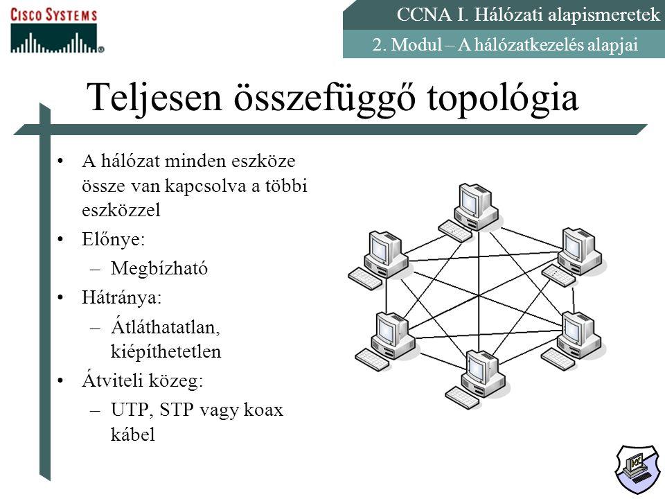Teljesen összefüggő topológia