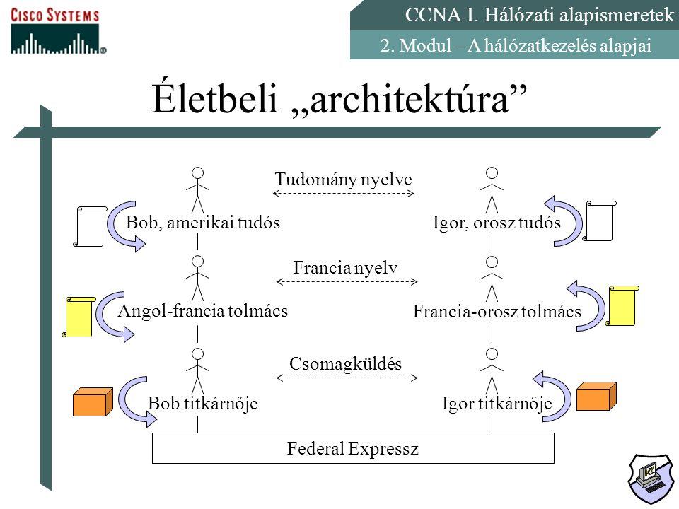 """Életbeli """"architektúra"""