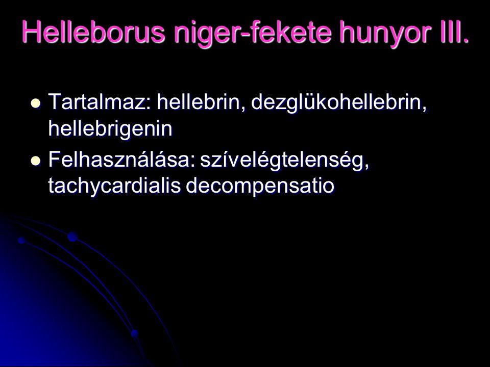 Helleborus niger-fekete hunyor III.