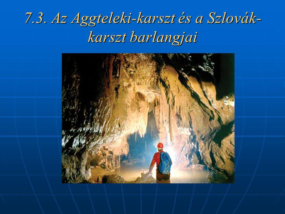 7.3. Az Aggteleki-karszt és a Szlovák- karszt barlangjai