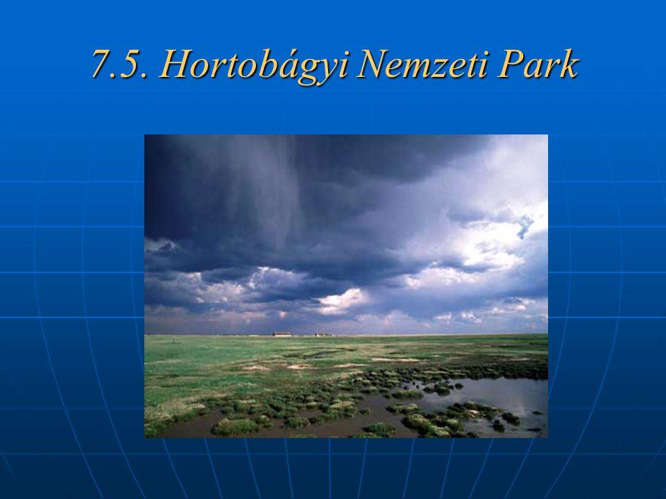 7.5. Hortobágyi Nemzeti Park