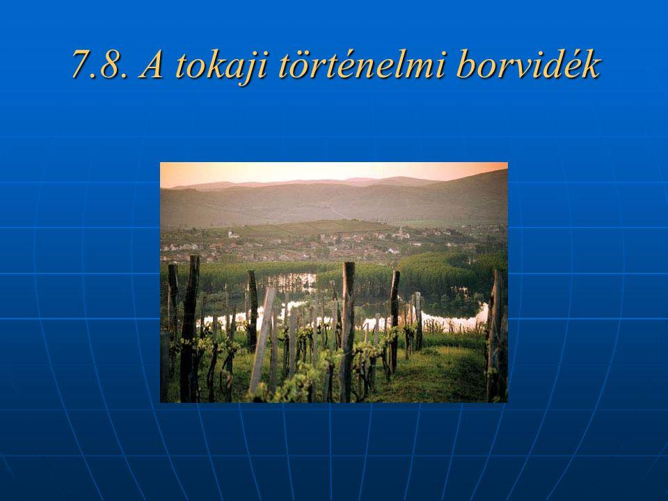 7.8. A tokaji történelmi borvidék