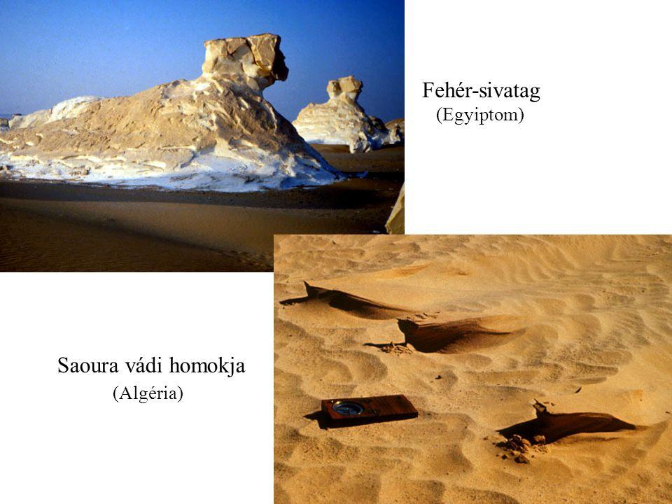 Fehér-sivatag (Egyiptom) Saoura vádi homokja (Algéria)