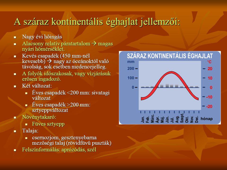 A száraz kontinentális éghajlat jellemzői: