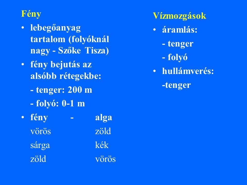 Fény lebegőanyag tartalom (folyóknál nagy - Szőke Tisza) fény bejutás az alsóbb rétegekbe: - tenger: 200 m.