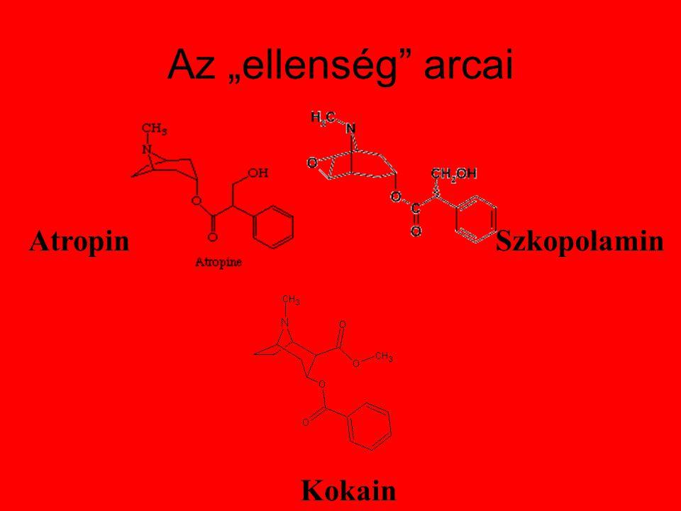 "Az ""ellenség arcai Atropin Szkopolamin Kokain"