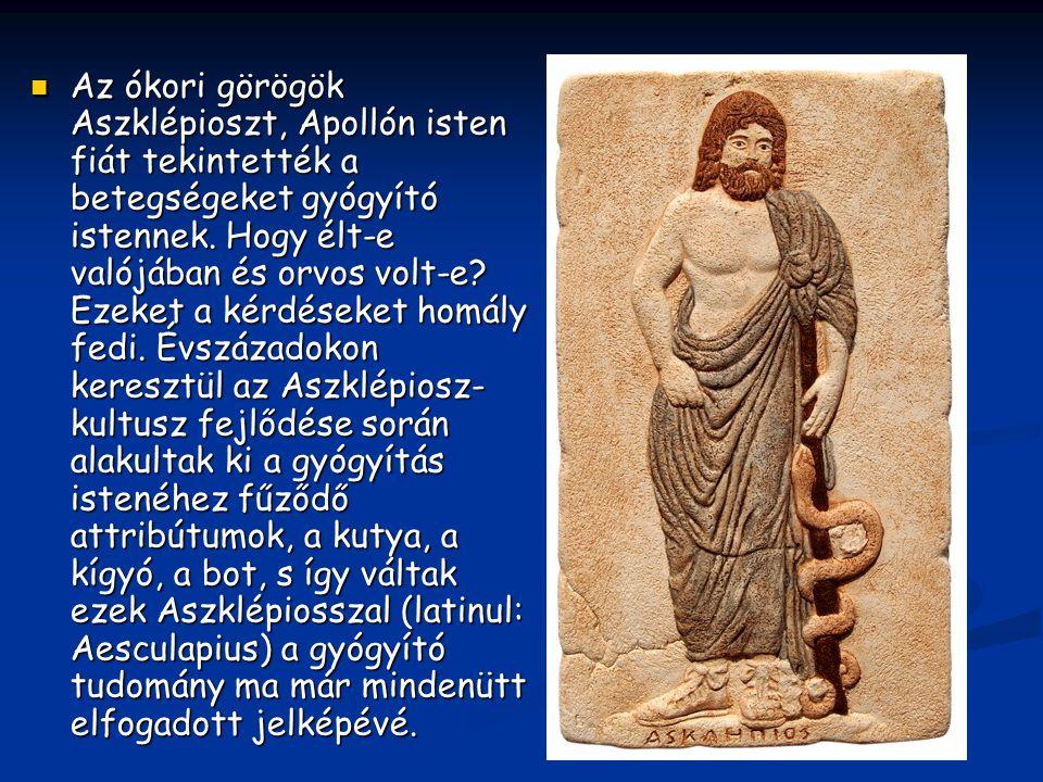 Az ókori görögök Aszklépioszt, Apollón isten fiát tekintették a betegségeket gyógyító istennek.