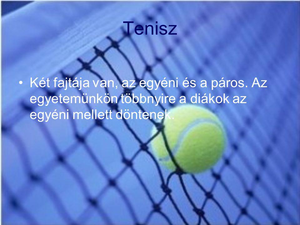 Tenisz Két fajtája van, az egyéni és a páros.