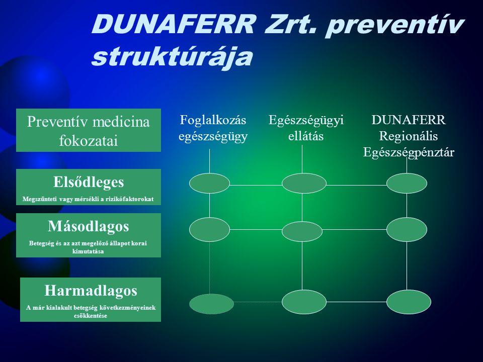 DUNAFERR Zrt. preventív struktúrája