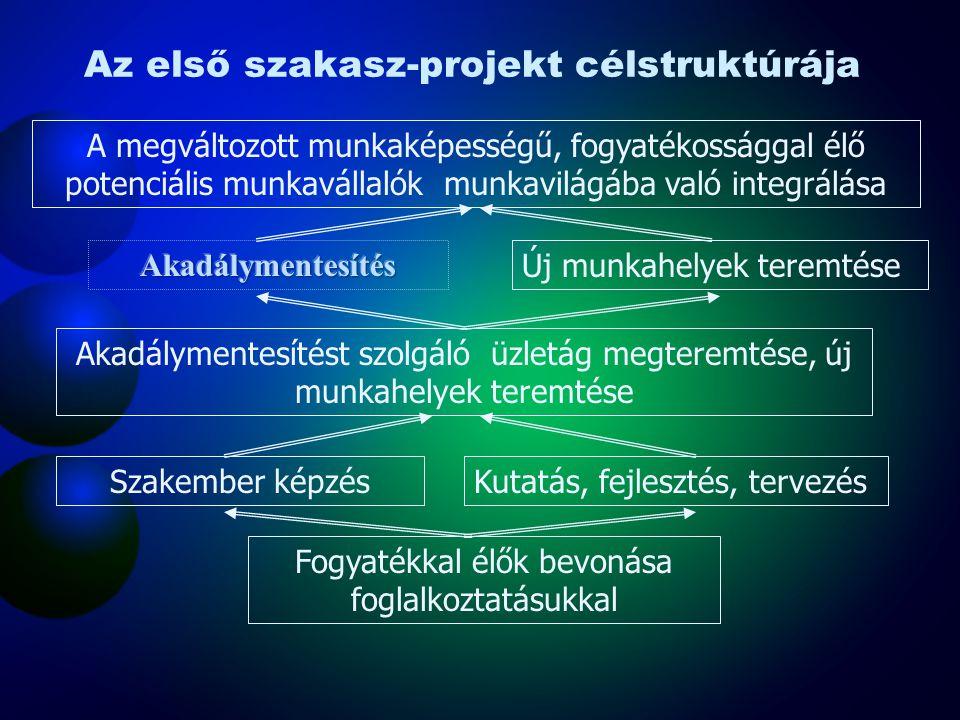 Az első szakasz-projekt célstruktúrája