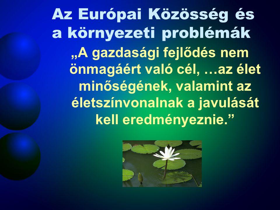 Az Európai Közösség és a környezeti problémák