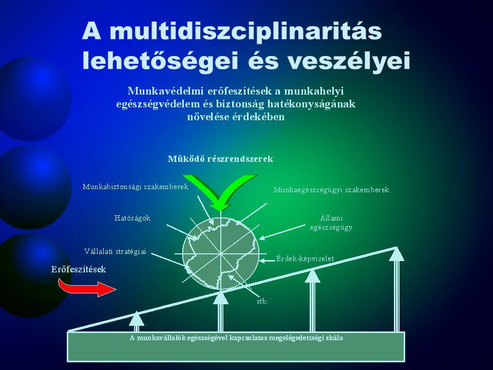 A multidiszciplinaritás lehetőségei és veszélyei
