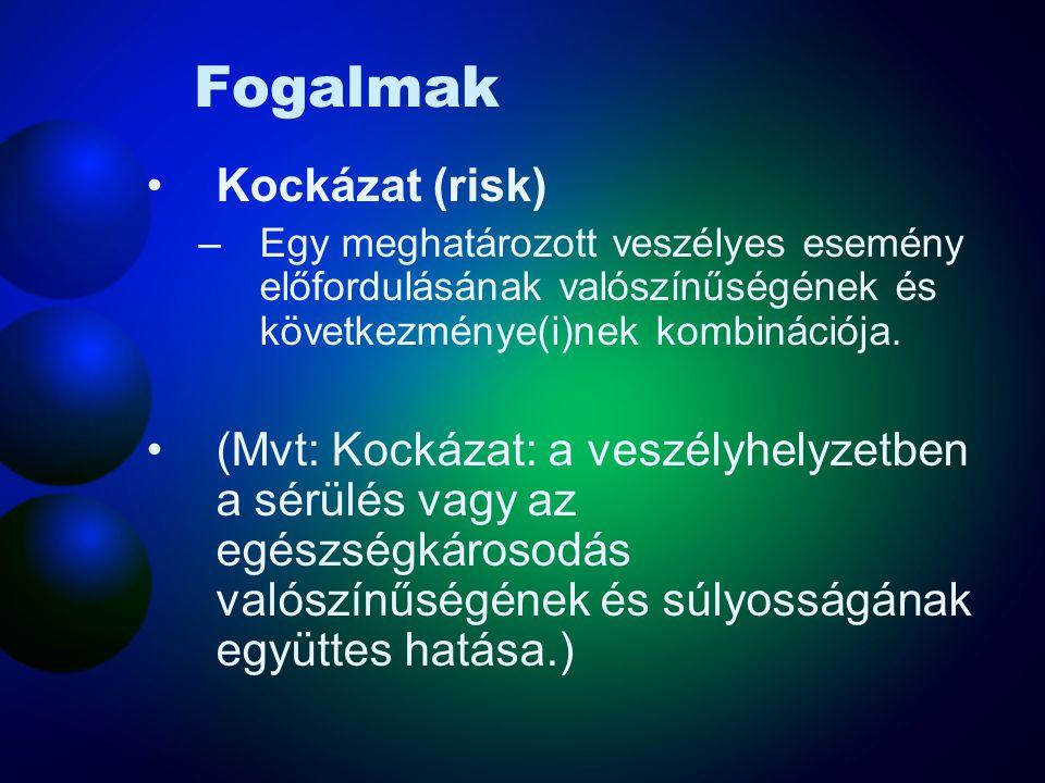 Fogalmak Kockázat (risk)