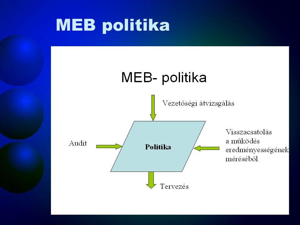 MEB politika