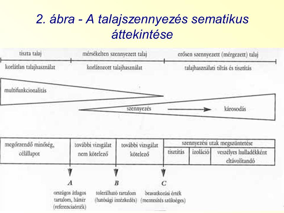 2. ábra - A talajszennyezés sematikus áttekintése