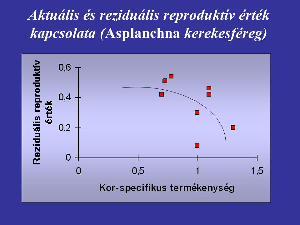 Aktuális és reziduális reproduktív érték kapcsolata (Asplanchna kerekesféreg)