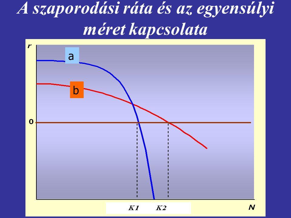 A szaporodási ráta és az egyensúlyi méret kapcsolata