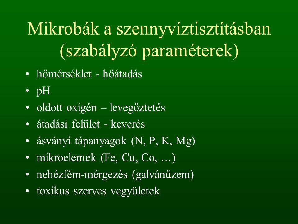 Mikrobák a szennyvíztisztításban (szabályzó paraméterek)