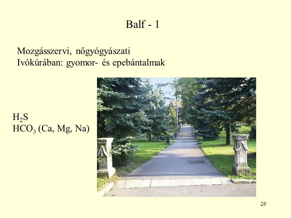 Balf - 1 Mozgásszervi, nőgyógyászati