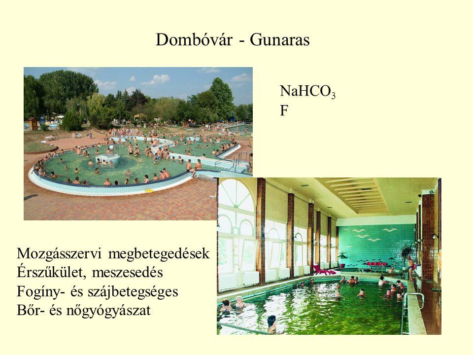 Dombóvár - Gunaras NaHCO3 F Mozgásszervi megbetegedések