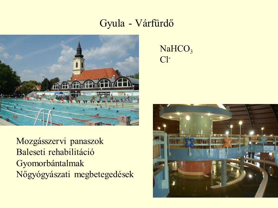 Gyula - Várfürdő NaHCO3 Cl- Mozgásszervi panaszok