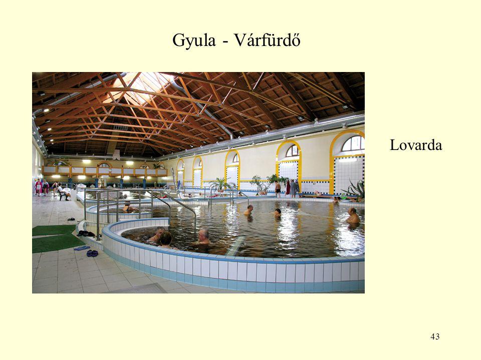 Gyula - Várfürdő Lovarda
