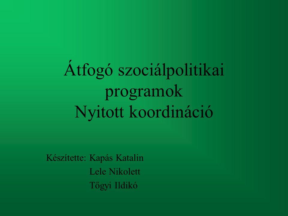 Átfogó szociálpolitikai programok Nyitott koordináció