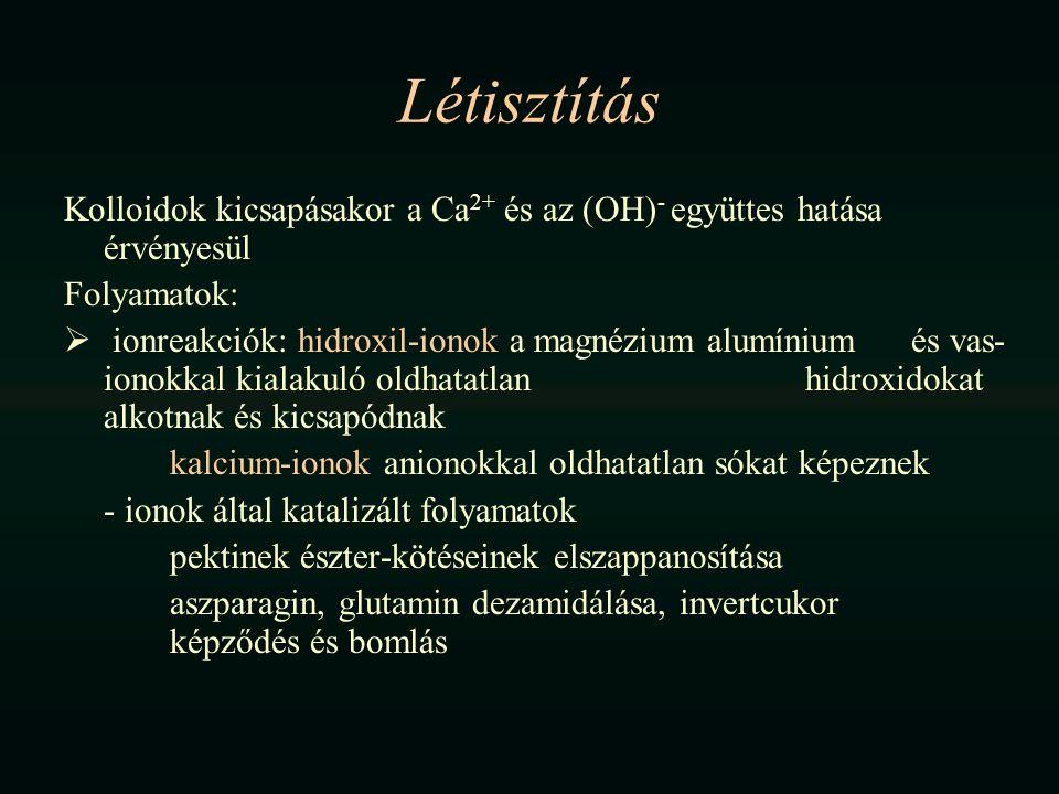 Létisztítás Kolloidok kicsapásakor a Ca2+ és az (OH)- együttes hatása érvényesül. Folyamatok: