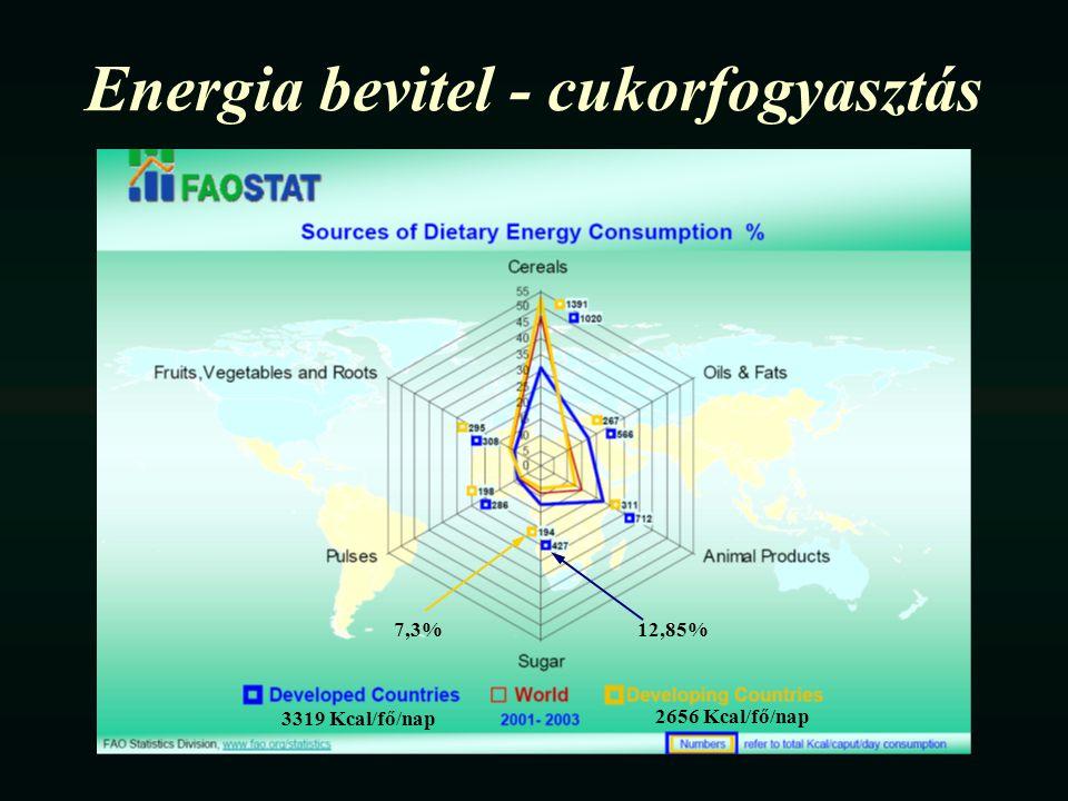 Energia bevitel - cukorfogyasztás