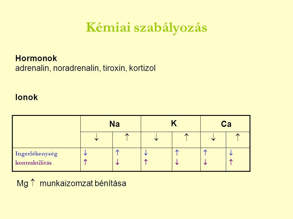 Kémiai szabályozás Hormonok adrenalin, noradrenalin, tiroxin, kortizol