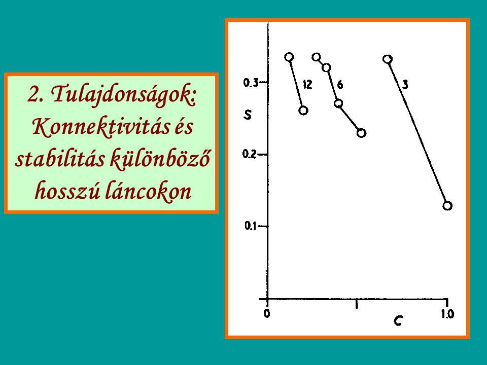 2. Tulajdonságok: Konnektivitás és stabilitás különböző hosszú láncokon