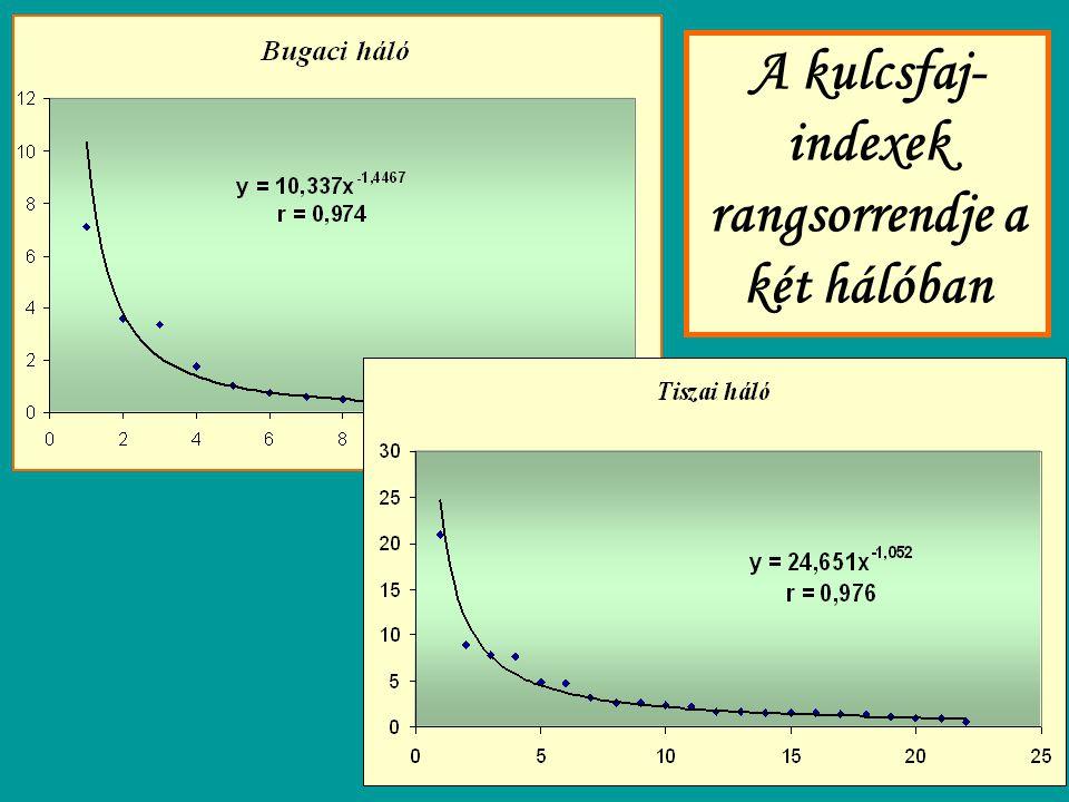 A kulcsfaj-indexek rangsorrendje a két hálóban