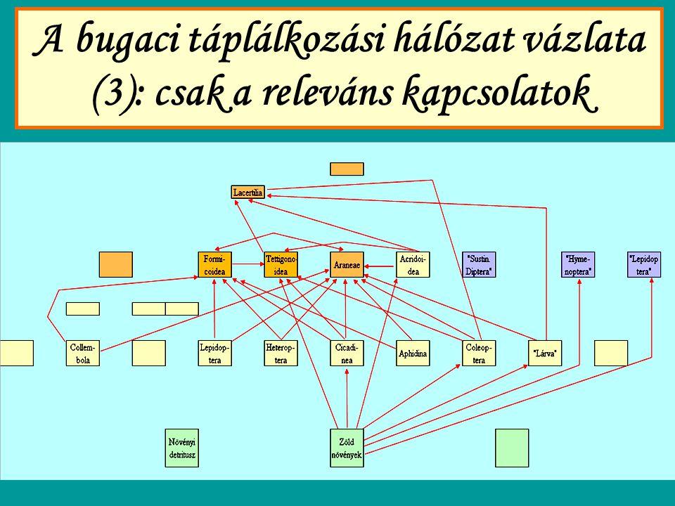 A bugaci táplálkozási hálózat vázlata (3): csak a releváns kapcsolatok