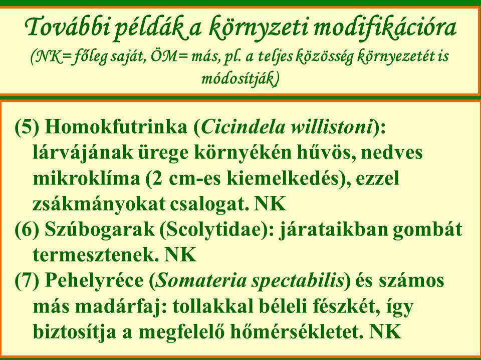 További példák a környzeti modifikációra (NK= főleg saját, ÖM= más, pl