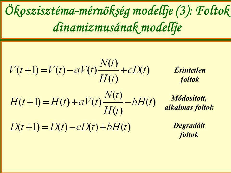 Ökoszisztéma-mérnökség modellje (3): Foltok dinamizmusának modellje