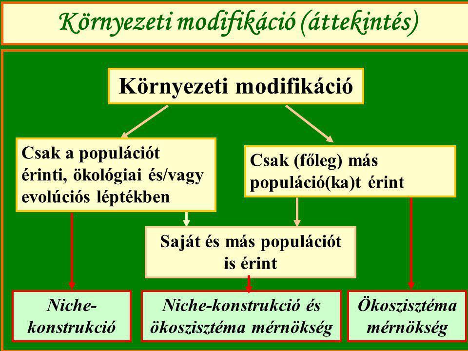 Környezeti modifikáció (áttekintés)