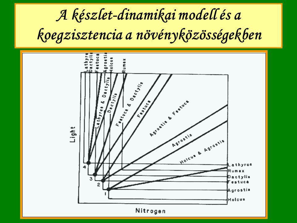 A készlet-dinamikai modell és a koegzisztencia a növényközösségekben