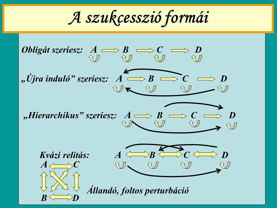 A szukcesszió formái A C Obligát szeriesz: A B C D