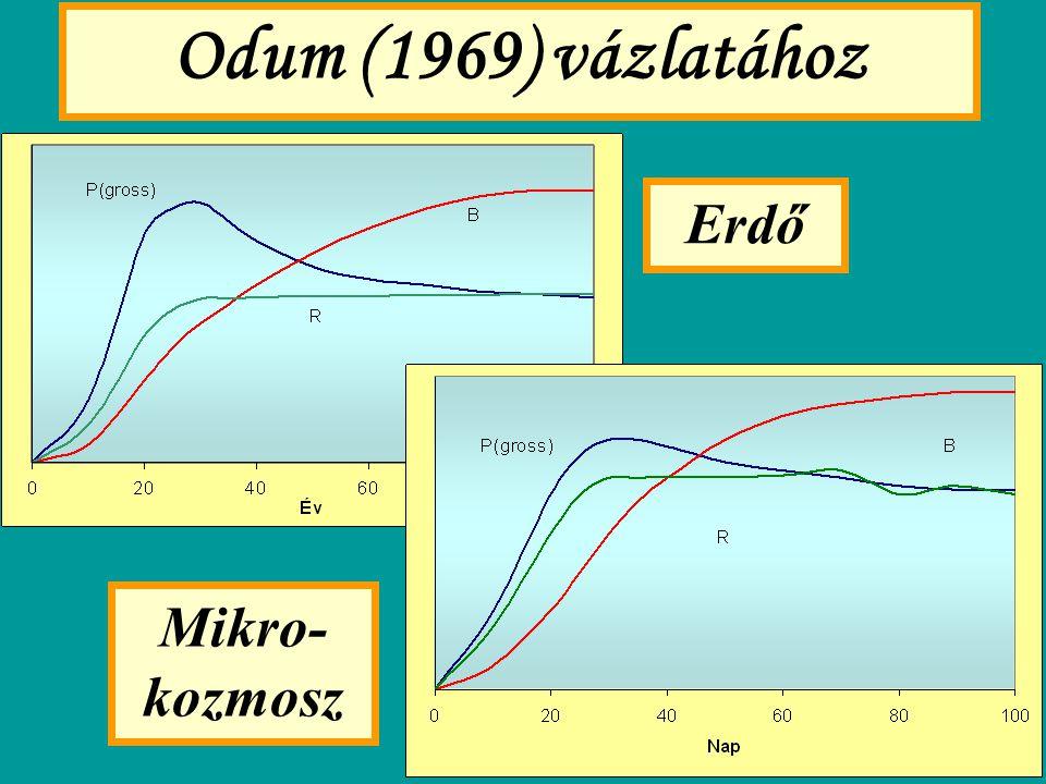 Odum (1969) vázlatához Erdő Mikro-kozmosz