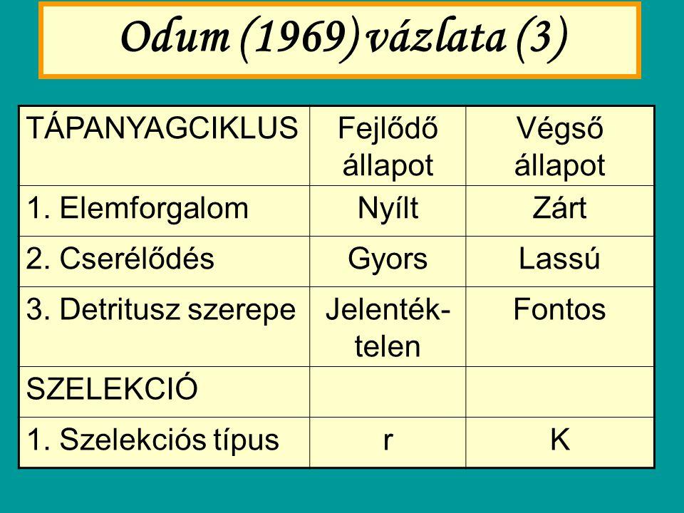 Odum (1969) vázlata (3) TÁPANYAGCIKLUS Fejlődő állapot Végső állapot