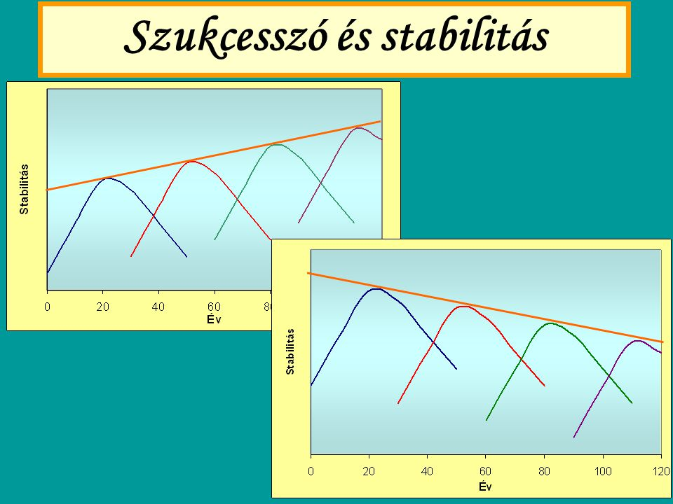 Szukcesszó és stabilitás