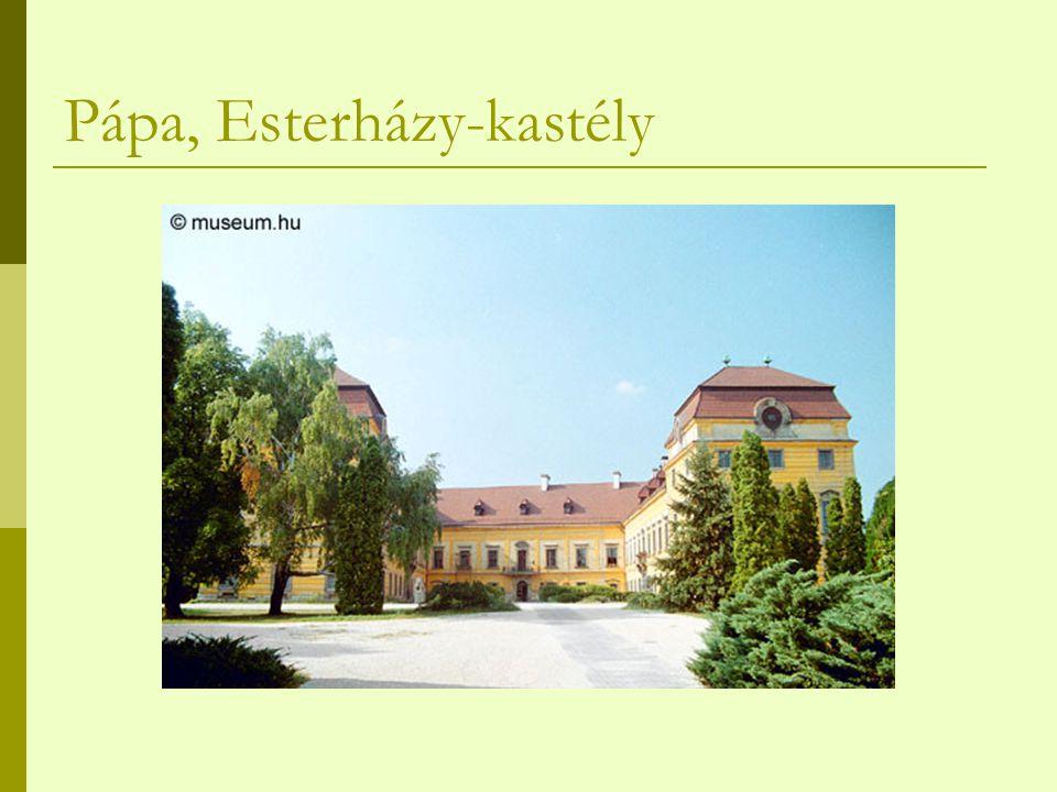 Pápa, Esterházy-kastély