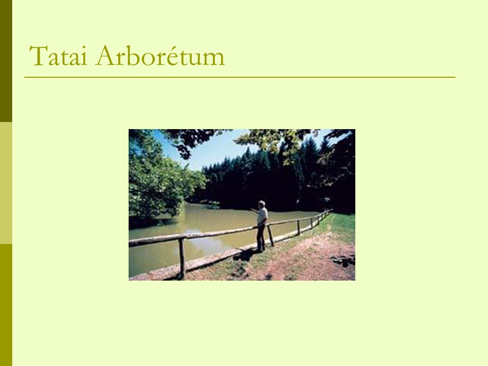 Tatai Arborétum