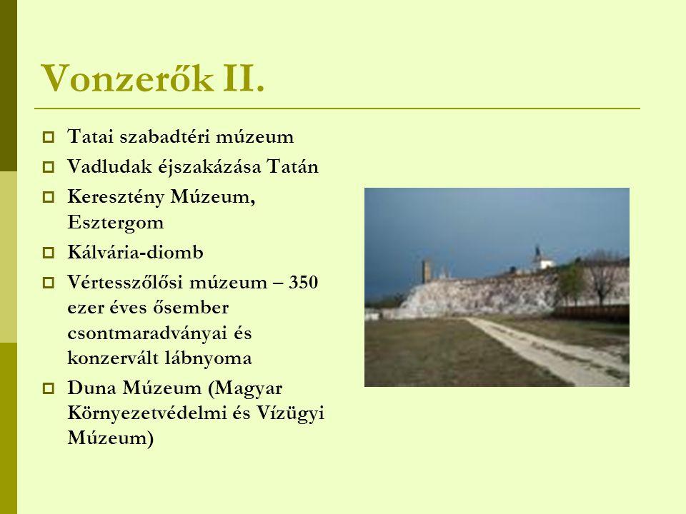 Vonzerők II. Tatai szabadtéri múzeum Vadludak éjszakázása Tatán